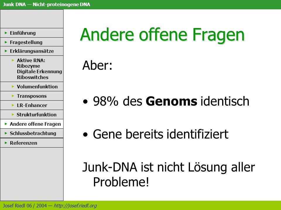 Andere offene Fragen Aber: 98% des Genoms identisch