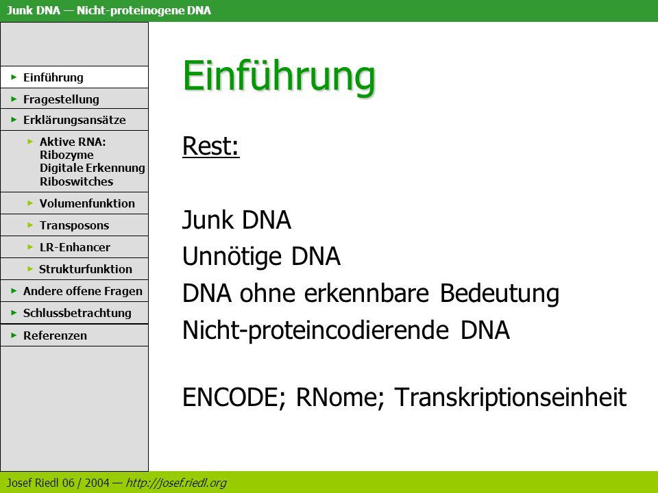 Einführung Rest: Junk DNA Unnötige DNA DNA ohne erkennbare Bedeutung