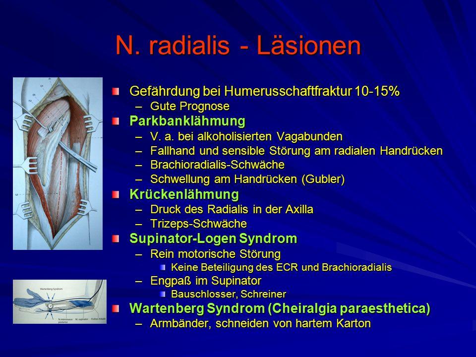 N. radialis - Läsionen Gefährdung bei Humerusschaftfraktur 10-15%