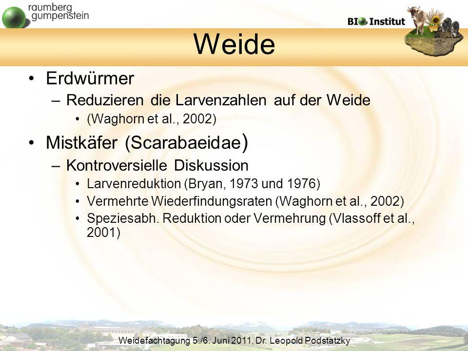 Weide Erdwürmer Mistkäfer (Scarabaeidae)
