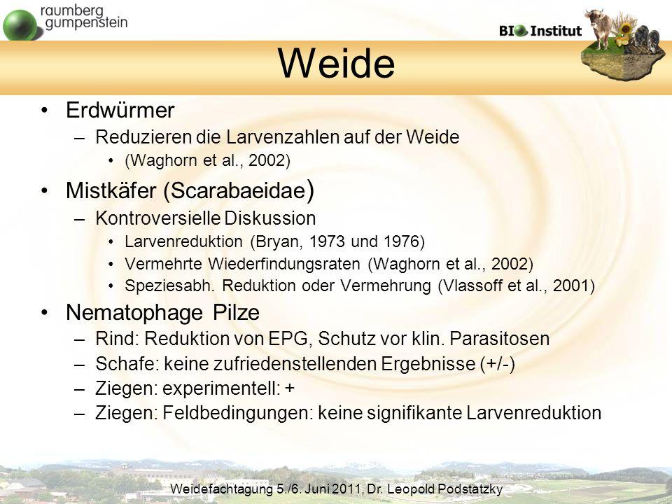 Weide Erdwürmer Mistkäfer (Scarabaeidae) Nematophage Pilze