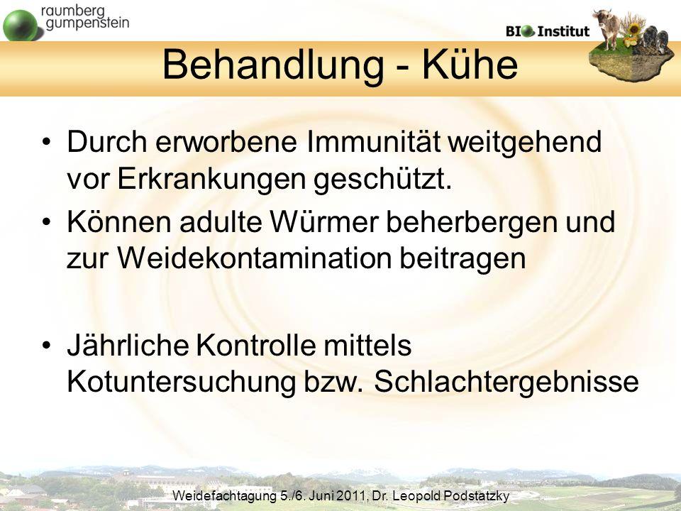 Behandlung - Kühe Durch erworbene Immunität weitgehend vor Erkrankungen geschützt.