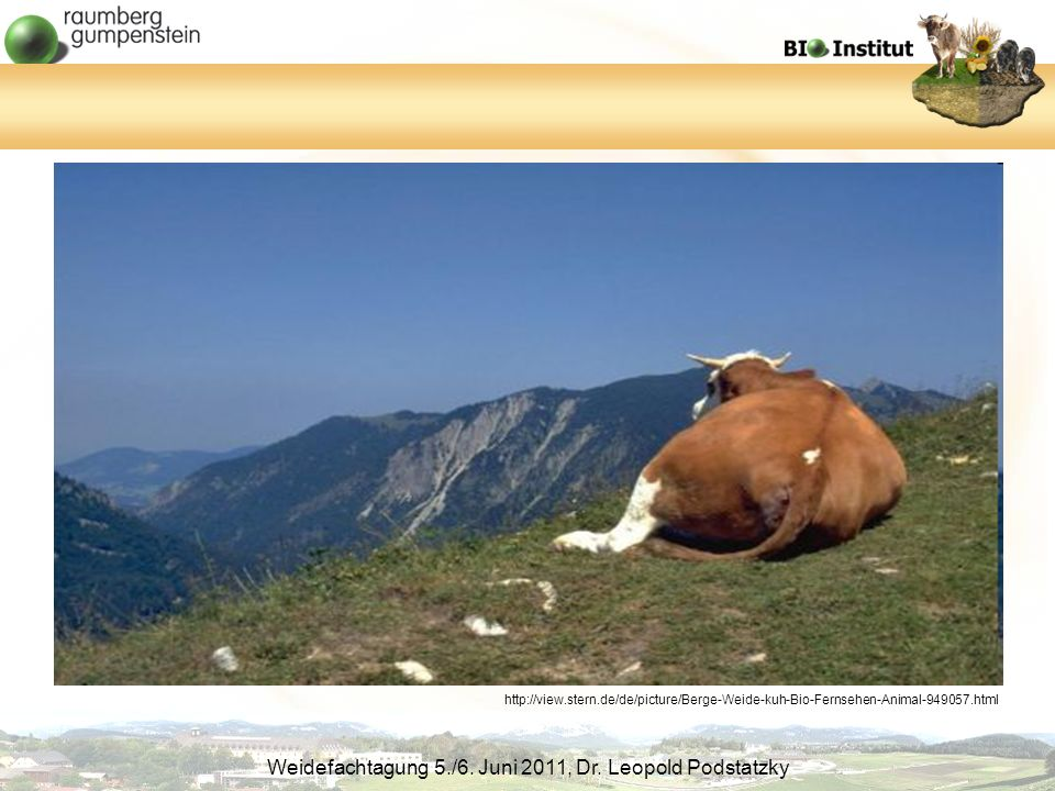 http://view.stern.de/de/picture/Berge-Weide-kuh-Bio-Fernsehen-Animal-949057.html