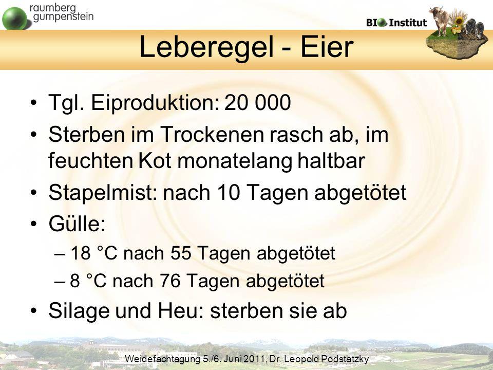 Leberegel - Eier Tgl. Eiproduktion: 20 000