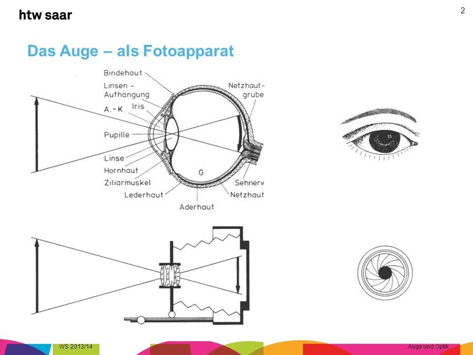 Das Auge – als Fotoapparat