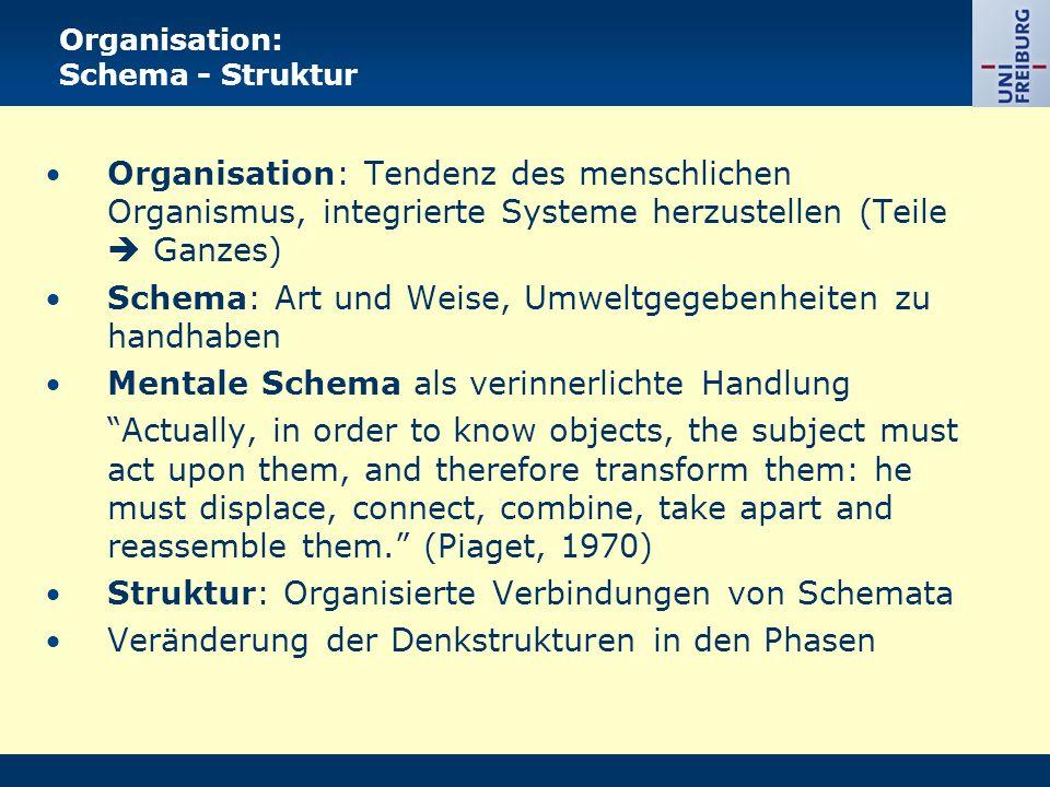 Organisation: Schema - Struktur