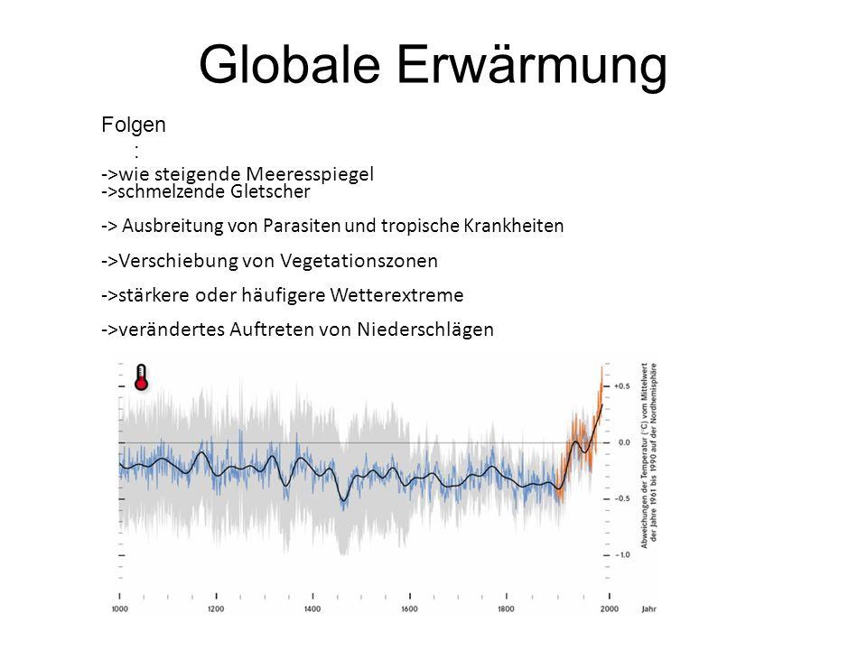 Globale Erwärmung Folgen: ->wie steigende Meeresspiegel