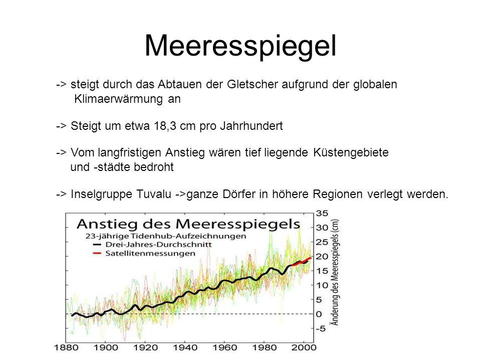 Meeresspiegel -> steigt durch das Abtauen der Gletscher aufgrund der globalen Klimaerwärmung an. -> Steigt um etwa 18,3 cm pro Jahrhundert.