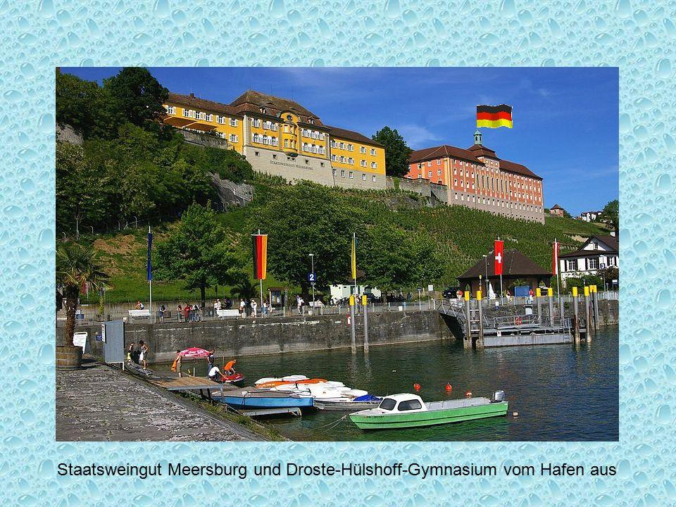 Staatsweingut Meersburg und Droste-Hülshoff-Gymnasium vom Hafen aus