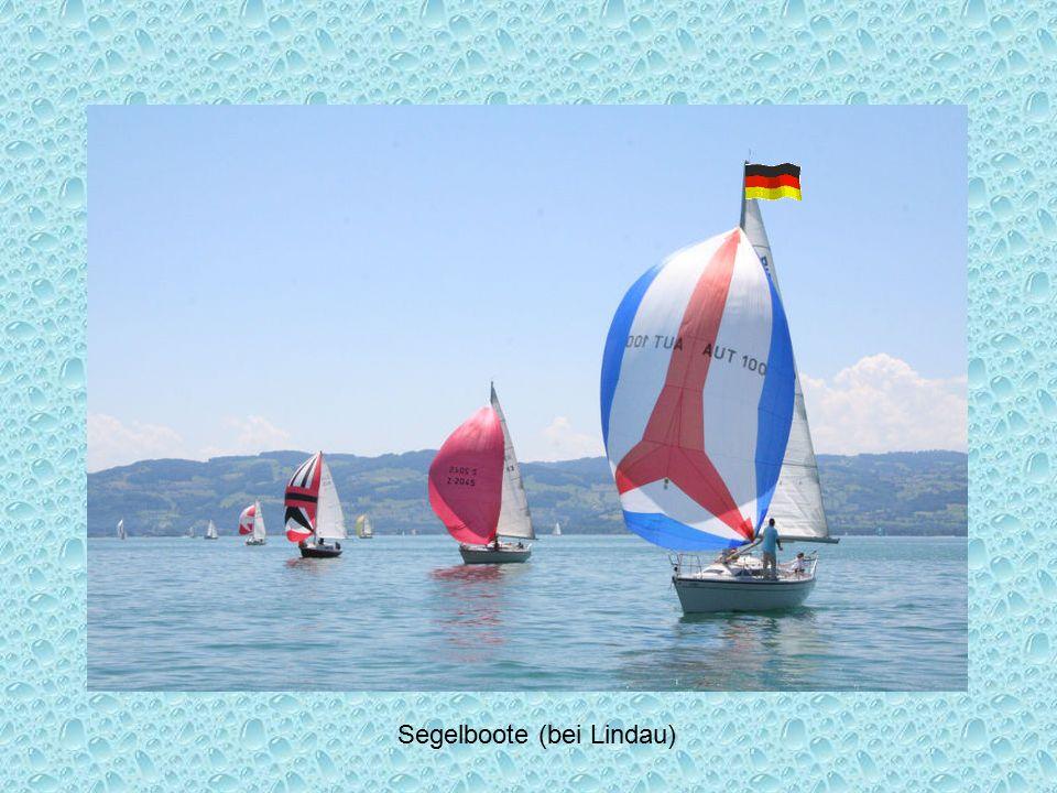 Segelboote (bei Lindau)