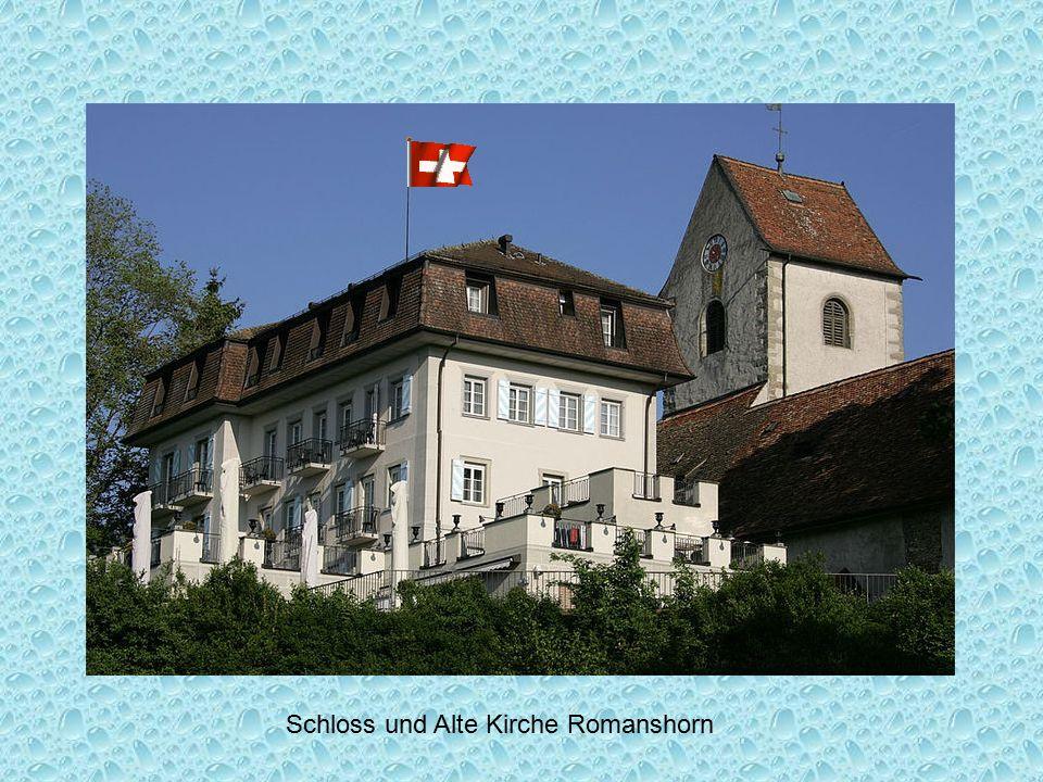 Schloss und Alte Kirche Romanshorn