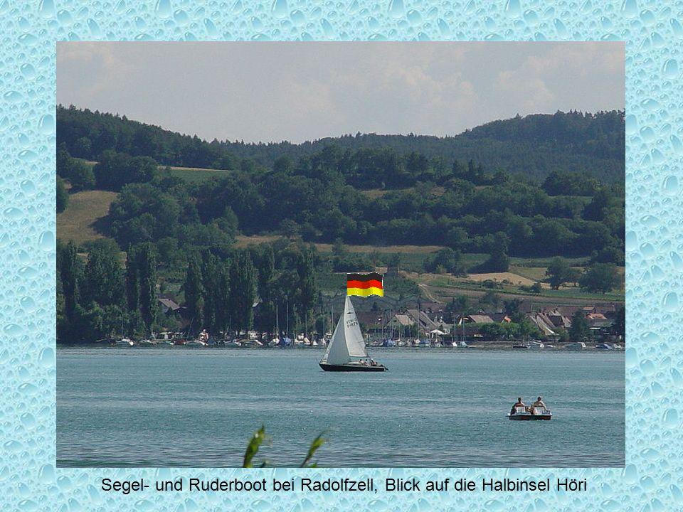 Segel- und Ruderboot bei Radolfzell, Blick auf die Halbinsel Höri
