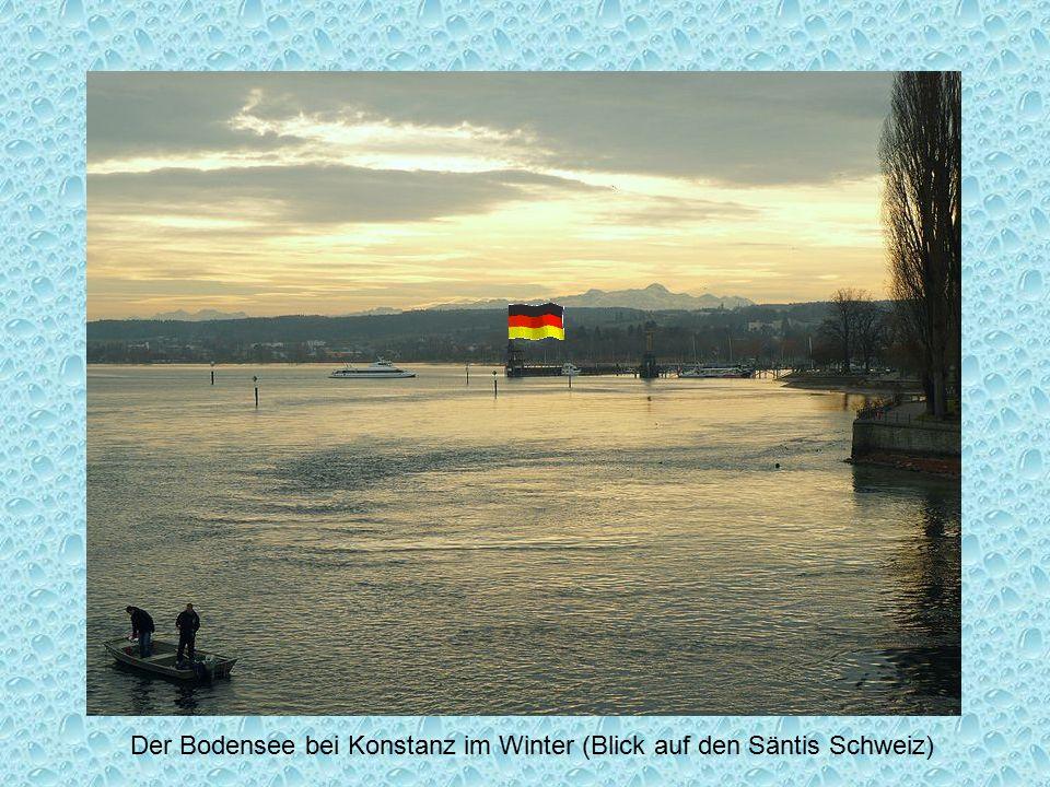 Der Bodensee bei Konstanz im Winter (Blick auf den Säntis Schweiz)