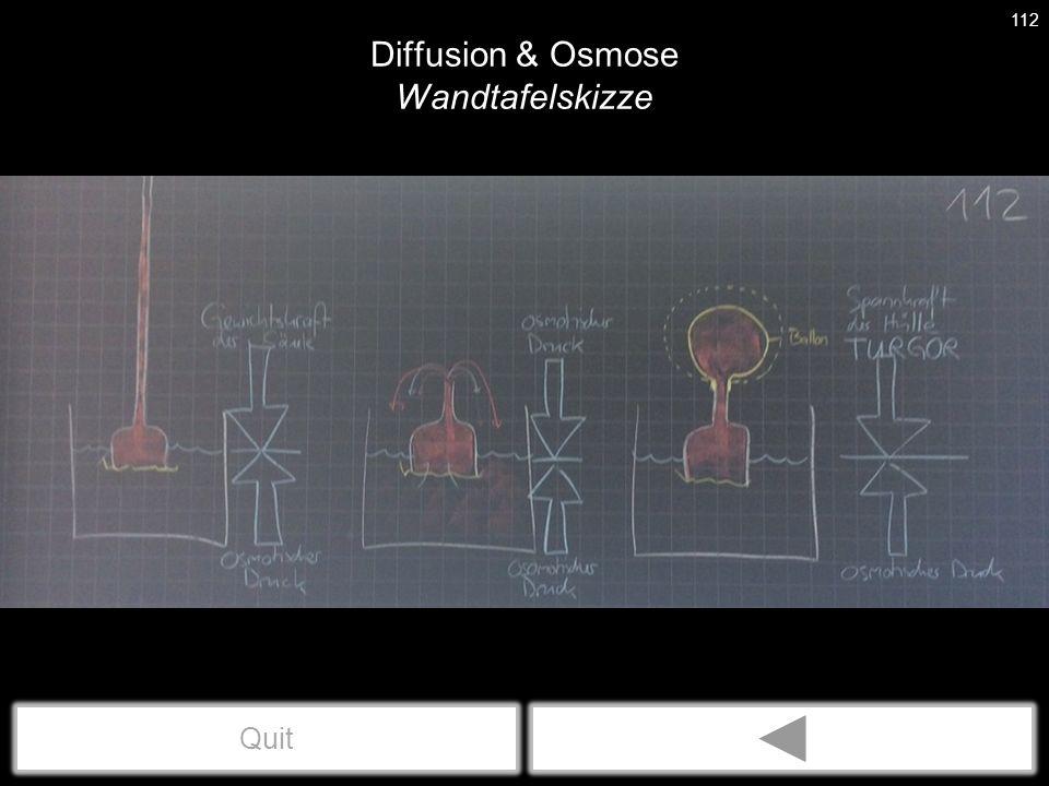 Diffusion & Osmose Linder23 Abb. 49.1