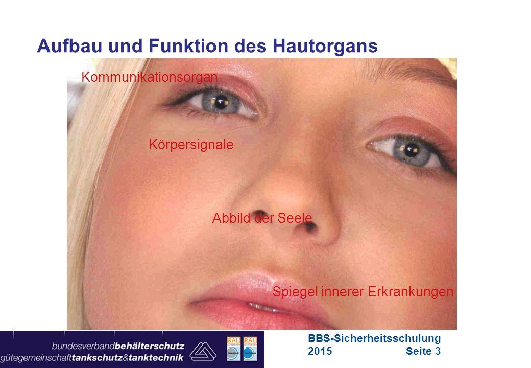 Aufbau und Funktion des Hautorgans