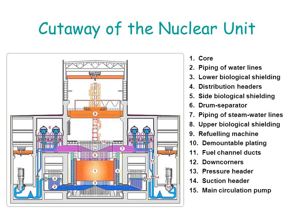Cutaway of the Nuclear Unit