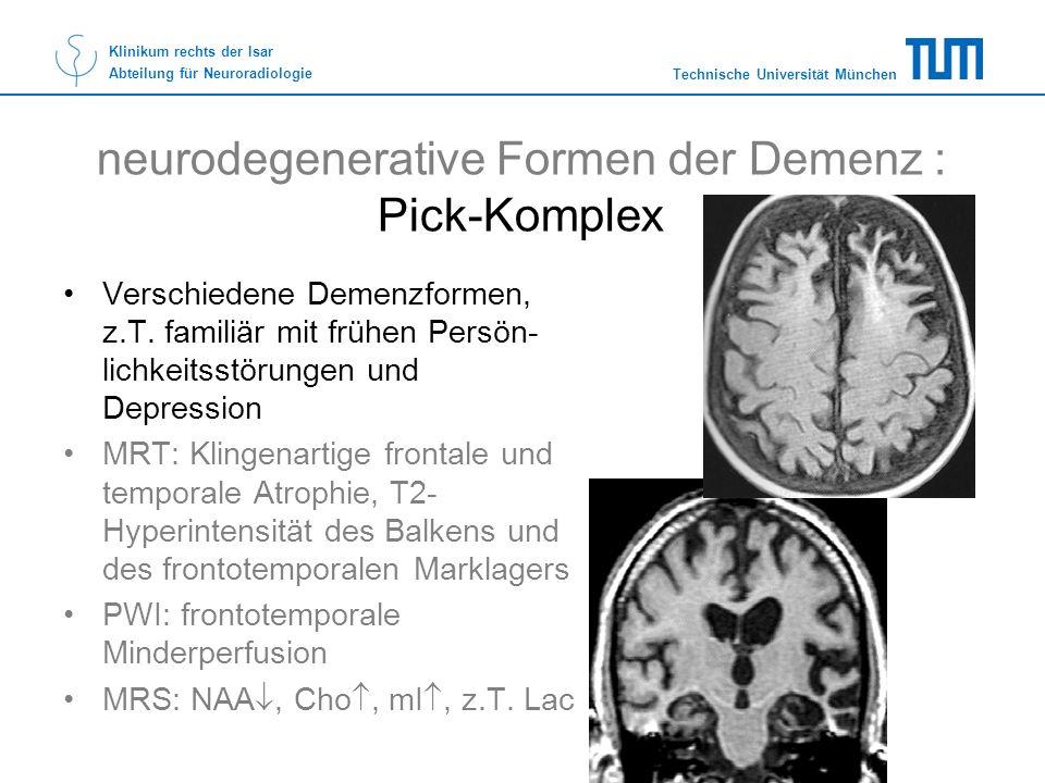 neurodegenerative Formen der Demenz : Pick-Komplex