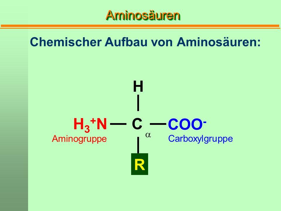 H H3+N C COO- R Aminosäuren Chemischer Aufbau von Aminosäuren: a