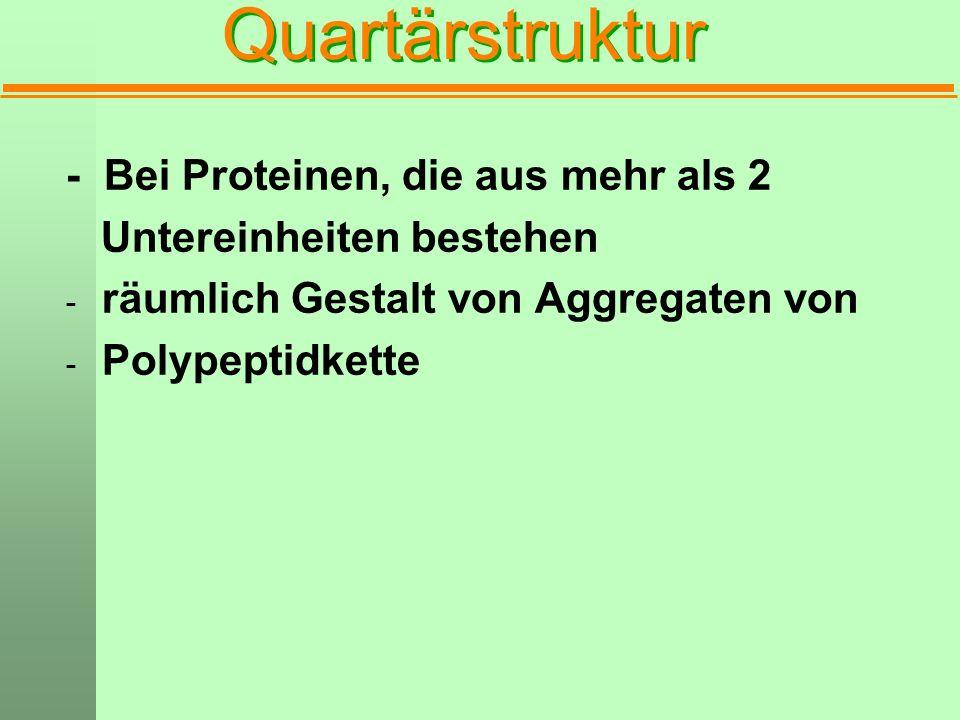 Quartärstruktur - Bei Proteinen, die aus mehr als 2
