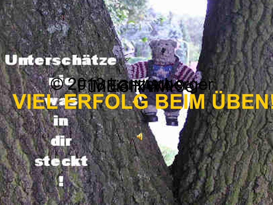© 2013 Lanzenberger MECHANIK Für die NWA 9er VIEL ERFOLG BEIM ÜBEN!