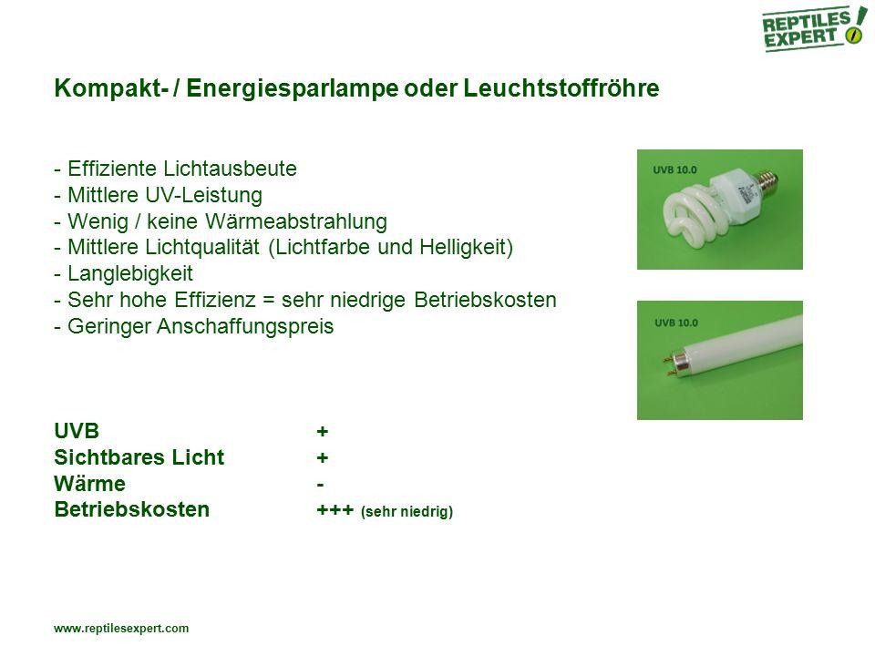 Kompakt- / Energiesparlampe oder Leuchtstoffröhre