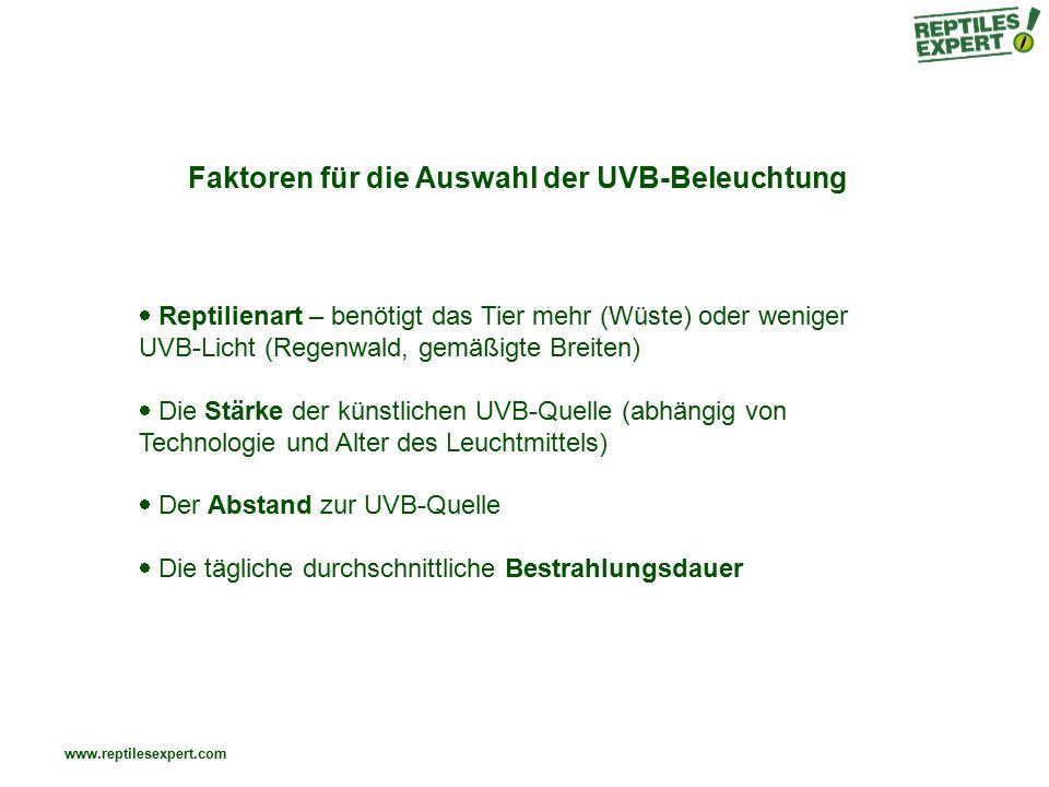 Faktoren für die Auswahl der UVB-Beleuchtung