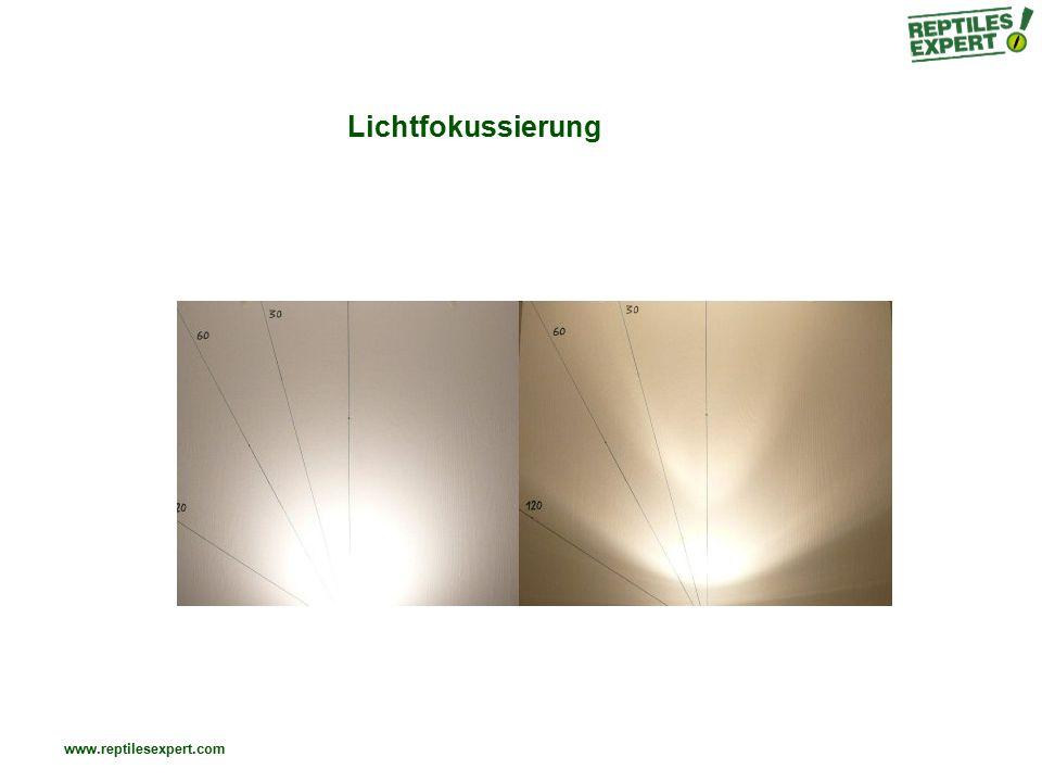 Lichtfokussierung