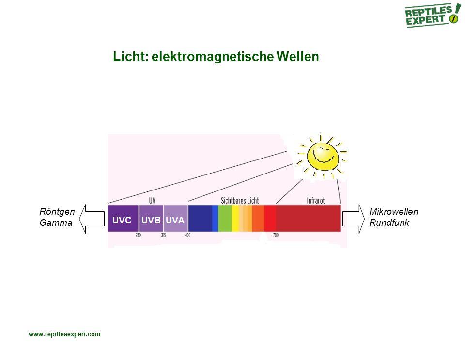 Licht: elektromagnetische Wellen