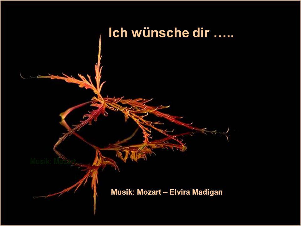 Ich wünsche dir ….. Musik: Mozart… Musik: Mozart – Elvira Madigan