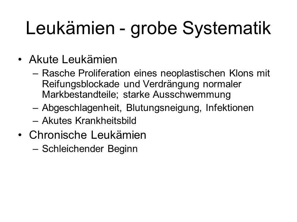 Leukämien - grobe Systematik