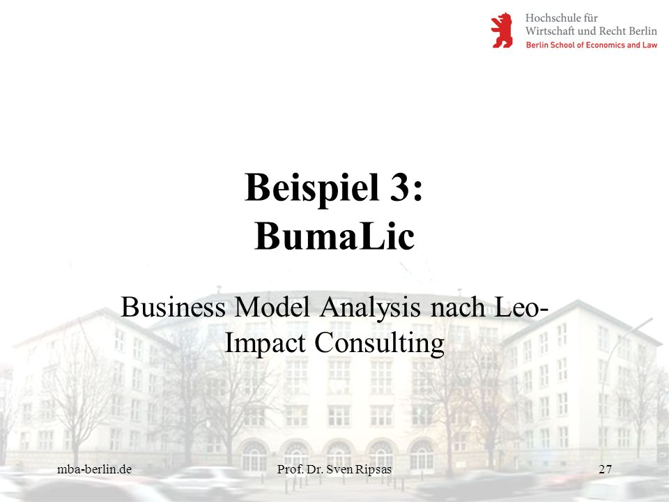 Business Model Analysis nach Leo-Impact Consulting