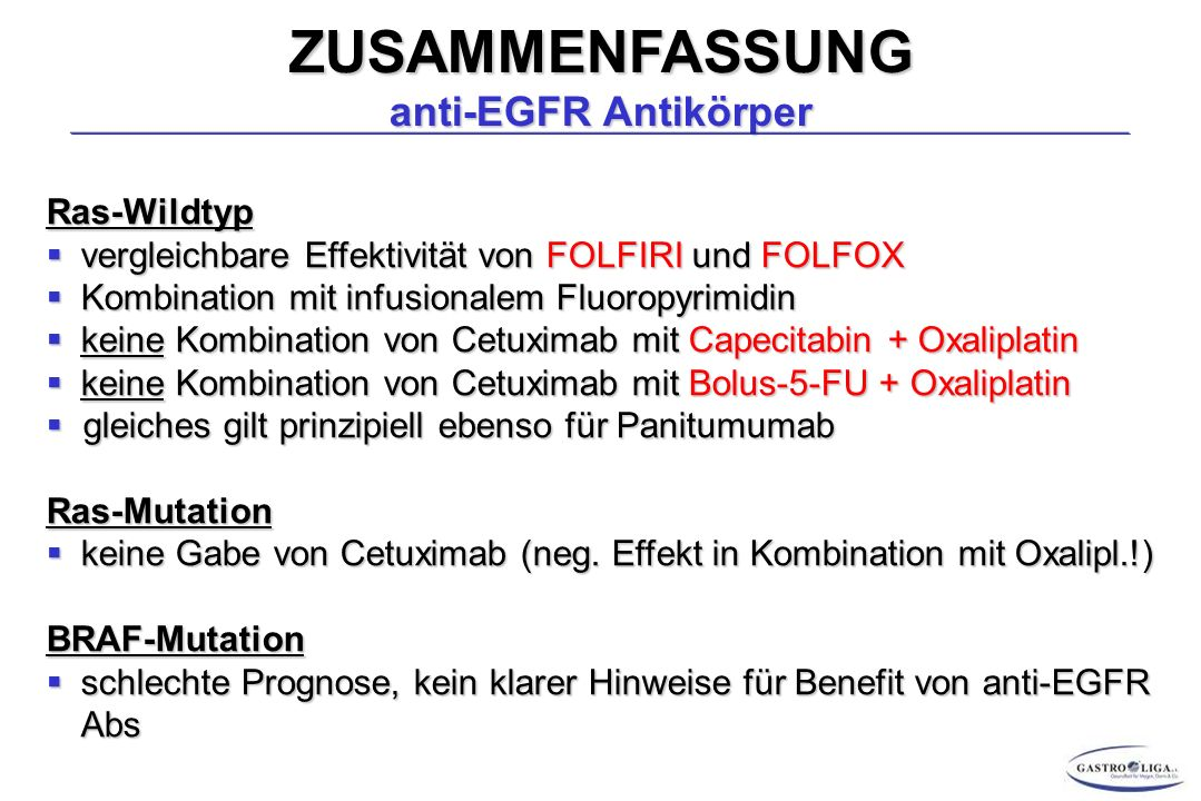 ZUSAMMENFASSUNG anti-EGFR Antikörper