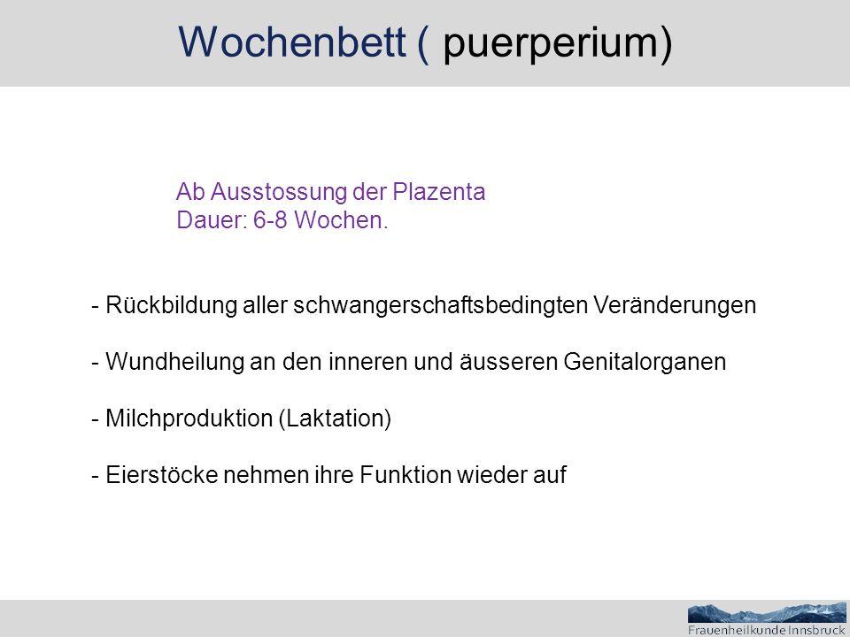Wochenbett ( puerperium)