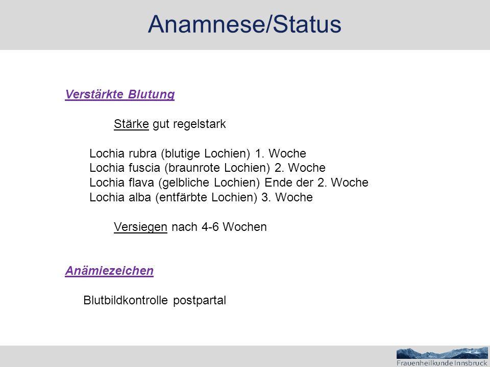 Anamnese/Status Verstärkte Blutung Stärke gut regelstark