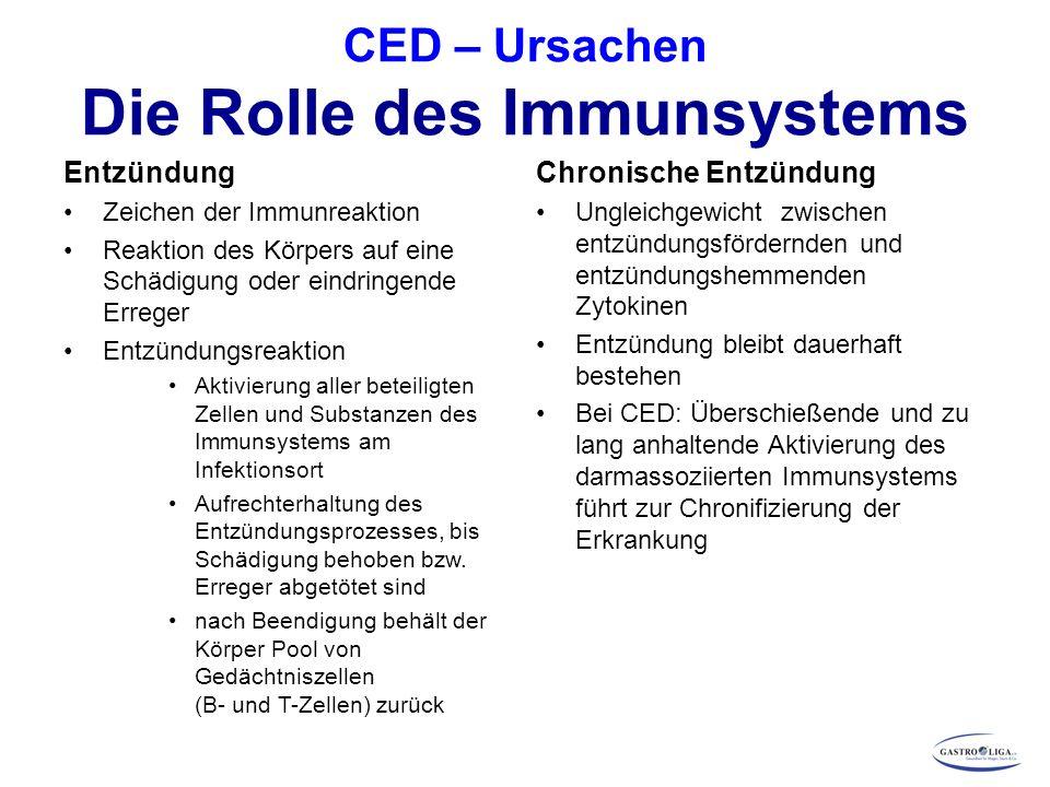 CED – Ursachen Die Rolle des Immunsystems