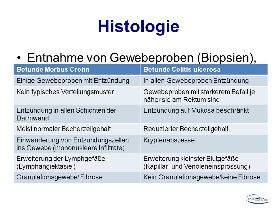 Histologie Entnahme von Gewebeproben (Biopsien), in der Regel während Endoskopie, und ihre mikroskopische Beurteilung.