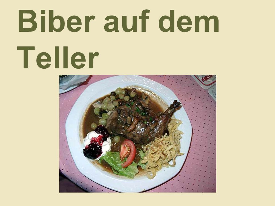 Biber auf dem Teller