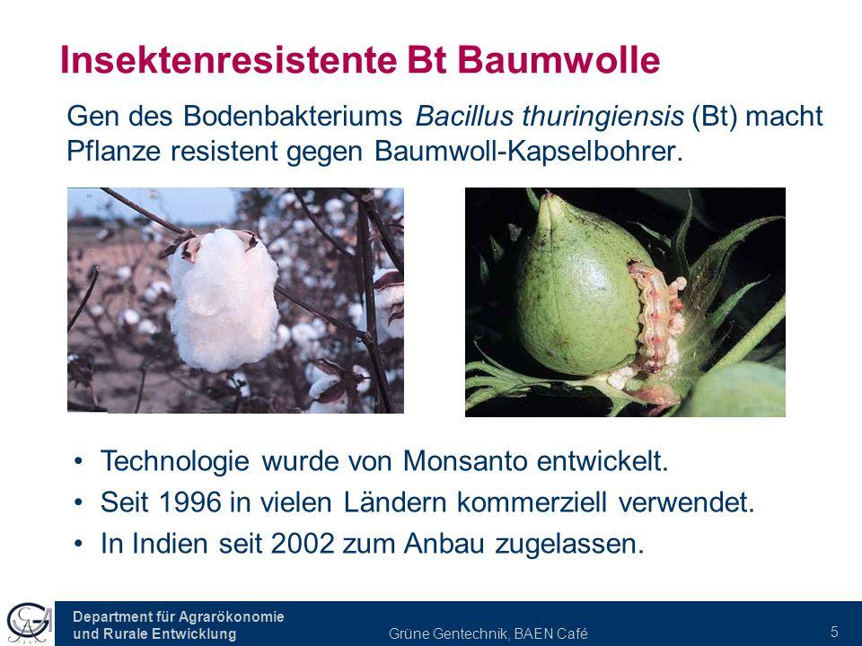 Insektenresistente Bt Baumwolle