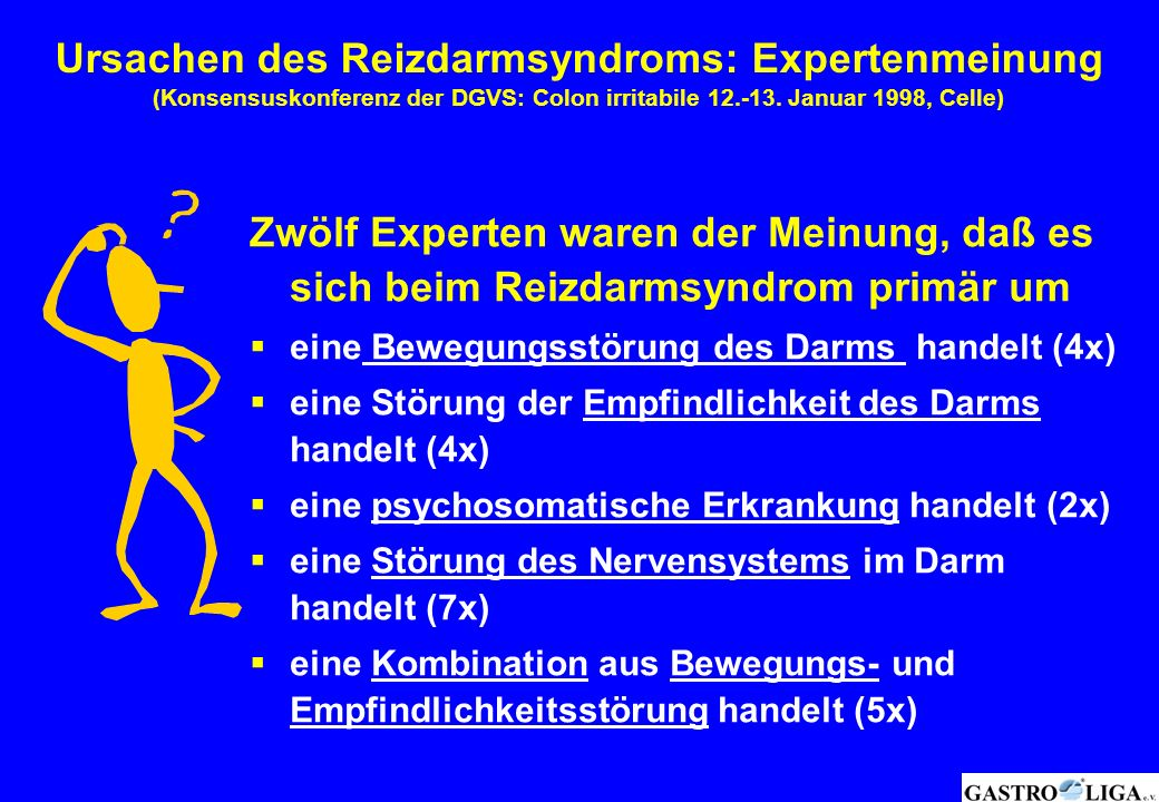 Ursachen des Reizdarmsyndroms: Expertenmeinung (Konsensuskonferenz der DGVS: Colon irritabile 12.-13. Januar 1998, Celle)