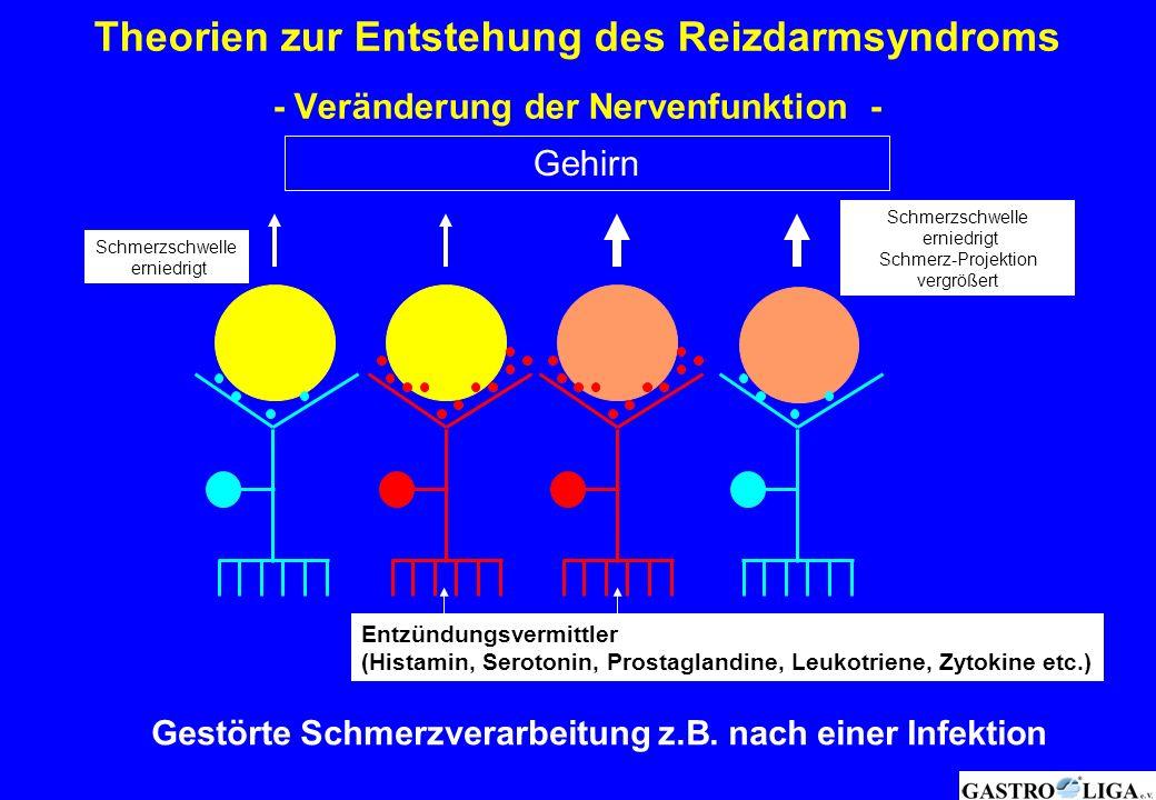 Theorien zur Entstehung des Reizdarmsyndroms - Veränderung der Nervenfunktion -