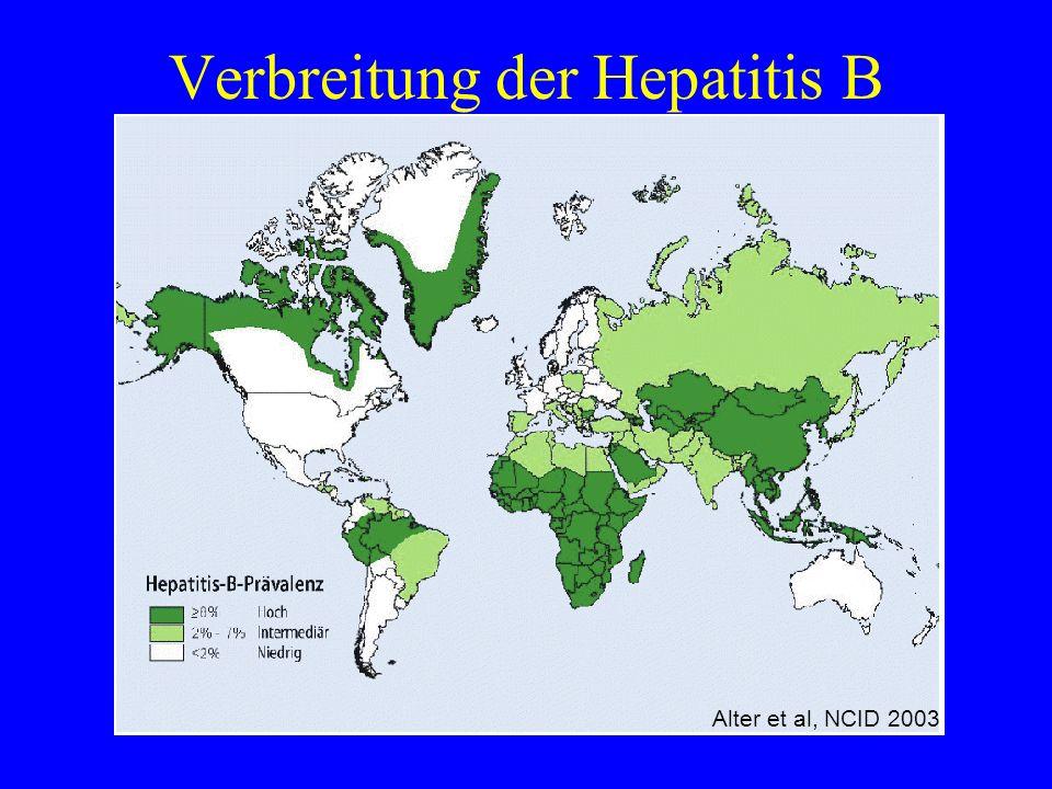 Verbreitung der Hepatitis B