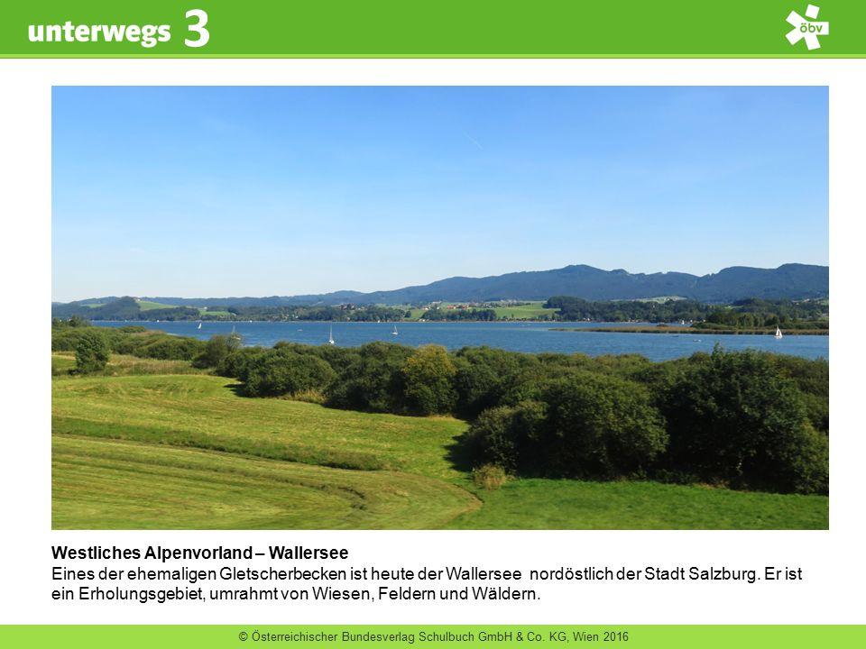 Westliches Alpenvorland – Wallersee