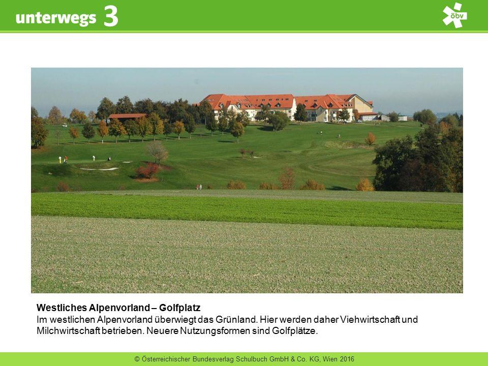 Westliches Alpenvorland – Golfplatz