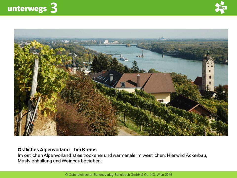 Östliches Alpenvorland – bei Krems