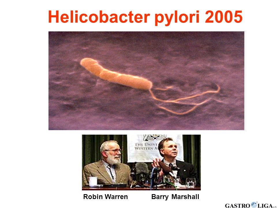 Helicobacter pylori Helicobacter pylori 2005