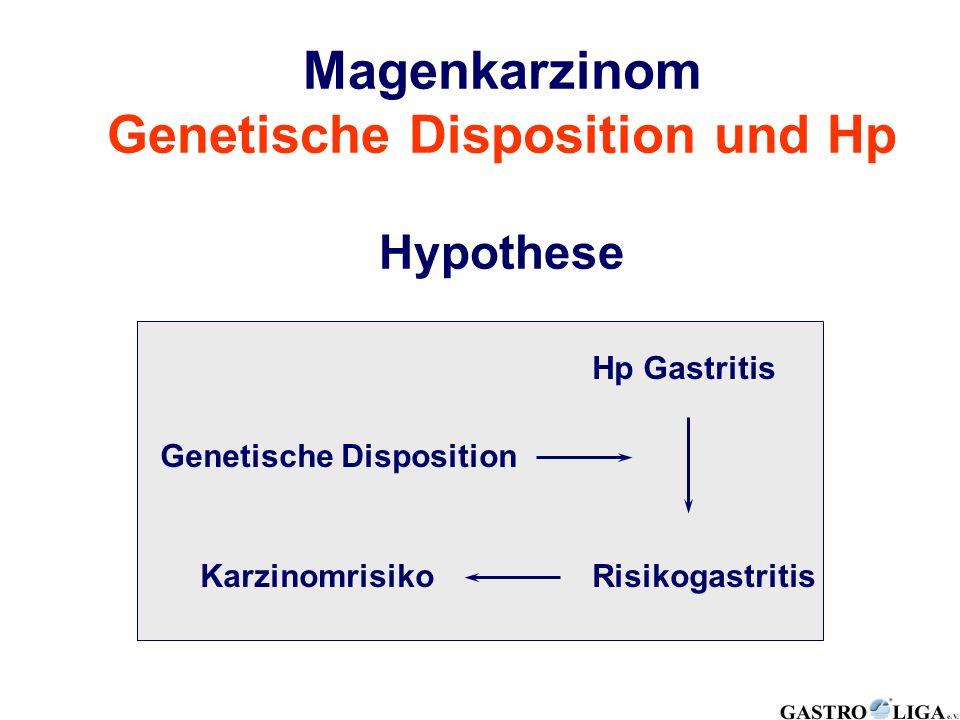 Genetische Disposition und Hp