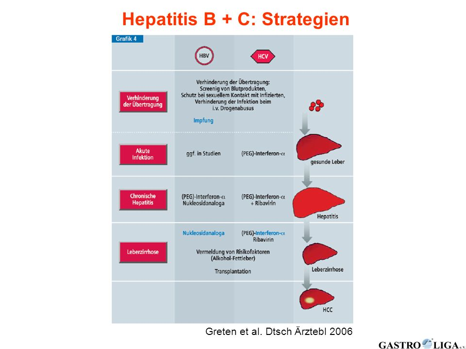 Hepatitis B + C: Strategien