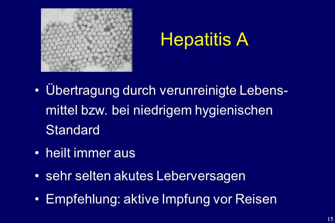 Hepatitis A Übertragung durch verunreinigte Lebens- mittel bzw. bei niedrigem hygienischen Standard.
