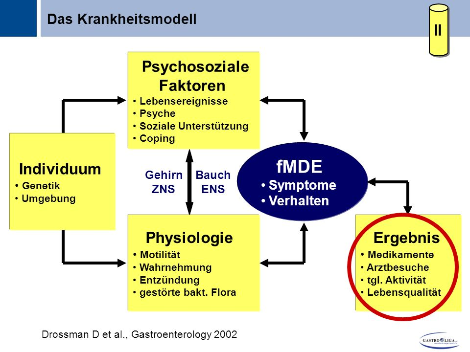 Drossman D et al., Gastroenterology 2002