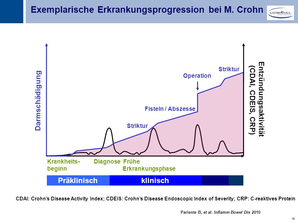 Entzündungsaktivität (CDAI, CDEIS, CRP)